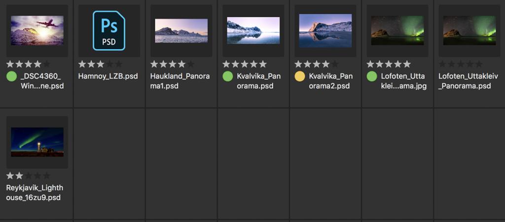 diverse Bewertungsmöglichkeiten für die Bildauswahl